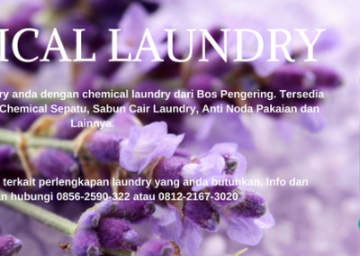 CHEMICAL LAUNDRY